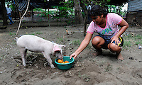 Site of new pig farming project supported by ACUDESBAL, in the community of San Juan del Gozo in the Bajo Lempa region of El Salvador..25.4.11.Nueva Esperanza, Bajo Lempa.El Salvador..© Kevin Hayes.Tel: Mob: +44 (0)7960 872 408 .kevinhayes@talktalk.net...