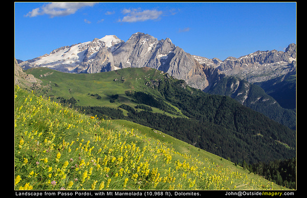 Italy, Dolomites.  <br /> Find foreground that gently slopes uphill. It makes positioning of these flowers, relative to the background (mountain) much easier. This means, if I lower the camera, the flowers will be positioned higher up the background slopes. <br /> Classic landscape from Passo Pordoi, with Mt Marmolada in the Dolomites, northeast Italy.