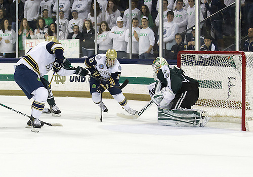 December 07, 2012:  Notre Dame left wing Jeff Costello (#11) drives to the net on Michigan State goaltender Jake Hildebrand (#30) during NCAA Hockey game action between the Notre Dame Fighting Irish and the Michigan State Spartans at Compton Family Ice Arena in South Bend, Indiana.  Notre Dame defeated Michigan State 3-2.