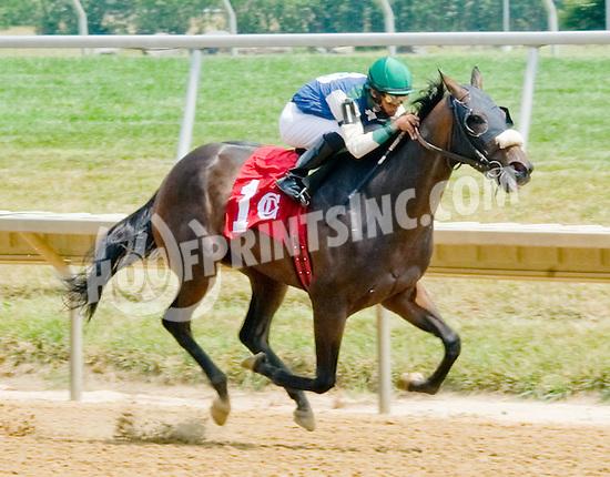 Crimson Pride winning at Delaware Park on 7/14512