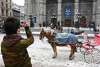2006 Model Release Photo -.14 year old chinese teenager take photos of the horse-drawn Caleches in front of Notre-Dame Basilica in Old-Montreal with a small Canon SD-300 Digital camera.