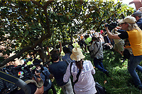 Media run after Unite the Right rally organizer Jason Kessler as he runs from a crowd of protestors who disrupted his press conference Sun., August 13, 2017 outside City Hall in Charlottesville, Va. The previous day, a woman was killed and several others injured after the Unite the Right rally, organized by Jason Kessler. Photo/Andrew Shurtleff