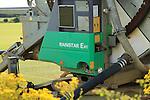Rainstar E41 irrigation sprayer watering field of grass turf, Alderton, Suffolk, England, UK