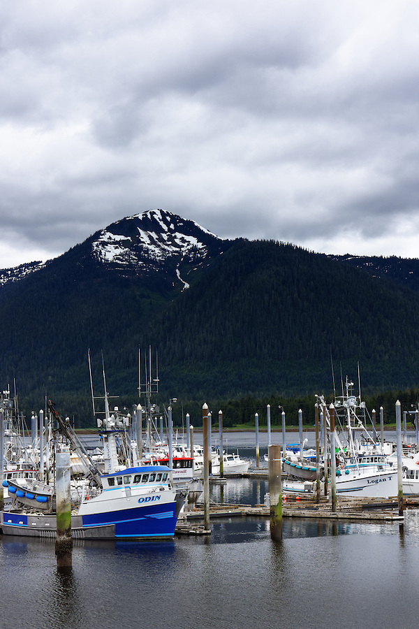 Odin, Logan T and other purse seiner commercial fishing boats at dock in South Harbor, Petersburg, Alaska, USA