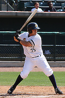 Hector Rabago #25 of the Charleston RiverDogs hitting in a game against the West Virginia Power on April 14, 2010  in Charleston, SC.