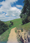 RT-S1, Skyline Ridge, Bay Area Ridge Trail, 4x6 postcard