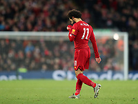 30th November 2019; Anfield, Liverpool, Merseyside, England; English Premier League Football, Liverpool versus Brighton and Hove Albion; Mohammed Salah of Liverpool looks dejected as he is substituted during the second half - Strictly Editorial Use Only. No use with unauthorized audio, video, data, fixture lists, club/league logos or 'live' services. Online in-match use limited to 120 images, no video emulation. No use in betting, games or single club/league/player publications
