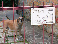 Italy, ITA, Tuscany, Montaione, 2010Aug05: A warning sign on a gate warning of a vicious dog.