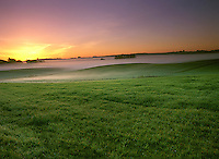 Green Pasture Lands near Bodega Bay