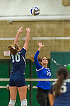 1 November 2015: Yeshiva University Maccabee Middle Blocker Gavriela Colton, a Junior from Teaneck, NJ, in action against the Saint Joseph College Bears at SUNY Old Westbury in Old Westbury, NY. The Bears shut out the Maccabees 3-0 in NCAA women's volleyball, Skyline Conference play. Mandatory Credit: Ed Wolfstein Photo *** RAW (NEF) Image File Available ***