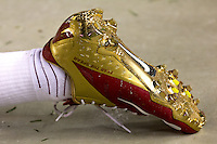 Florida State football shoe. Florida State defeated Pitt 41-13 at Heinz Field on September 2, 2013.