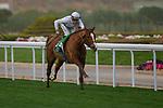 RIYADH,SAUDI ARABIA-FEB 29: Call the WInd,ridden by Olivier Peslier,wins the Longines Turf Handicap at King Abdulaziz Racetrack on February 29,2020 in Riyadh,Saudi Arabia. Kaz Ishida/Eclipse Sportswire/CSM