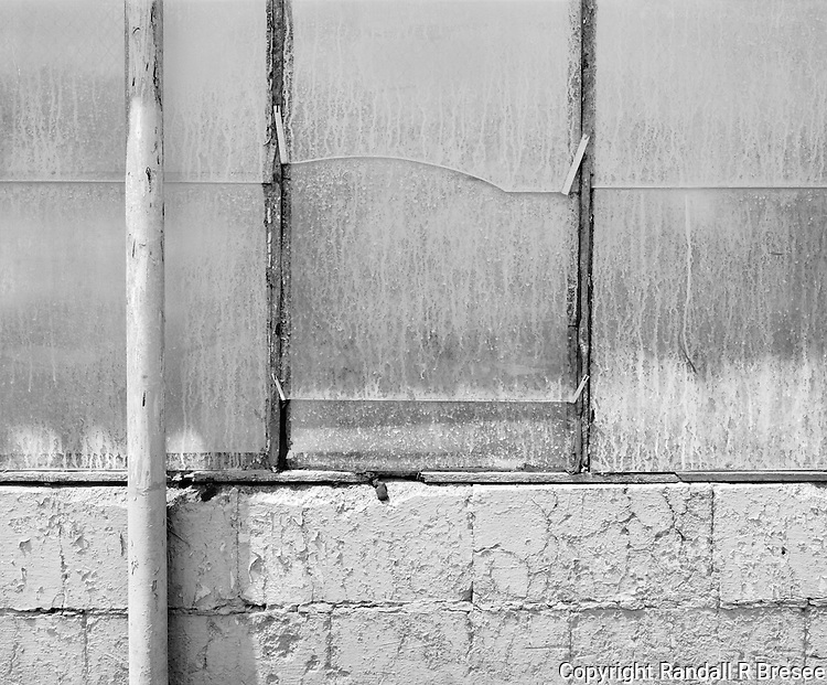 &quot;White Wall&quot; Gibson Greenhouses, Maryville, Tennessee<br />