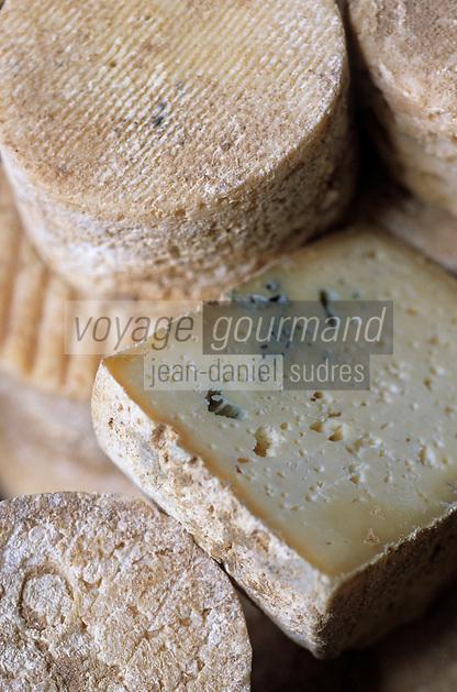 """Europe/France/Auvergne/43/Haute-Loire/Le Puy-en-Velay: Fromage local  du Velay aux artisons à 'La Fromagerie"""" 24 rue Grenouillit  //  France, Haute Loire, Le Puy en Velay, 24 Rue Grenouillit, La Fromagerie, local Velay cheese with cheese mites"""