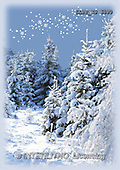Maira, CHRISTMAS LANDSCAPE, photos(LLPPZS6530,#XL#) Landschaften, Weihnachten, paisajes, Navidad