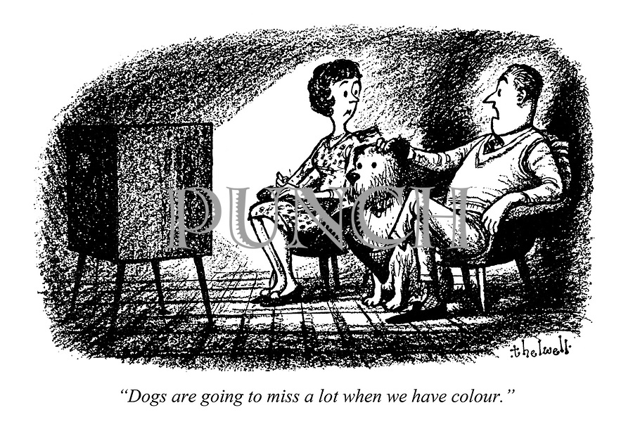 """""""Dogs are going to miss a lot when we have colour."""""""