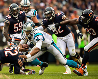 Photography of the Carolina Panthers v. The Chicago Bears at Solider Field in Chicago, IL.<br /> <br /> Charlotte Photographer - PatrickSchneiderPhoto.com