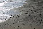 Dunwich beach, North Sea coast, Suffolk, East Anglia, England