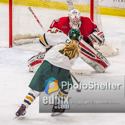 25 November 2016: University of Vermont Catamount Forward Cassidy Campeau, a Senior from Nepean, Ontario, scores Vermont's 4th goal in the 3rd period against the Saint Cloud State Huskies at Gutterson Fieldhouse in Burlington, Vermont. The Lady Cats defeated the Huskies 5-1 to take the first game of the 2016 Windjammer Classic Tournament. Mandatory Credit: Ed Wolfstein Photo *** RAW (NEF) Image File Available ***