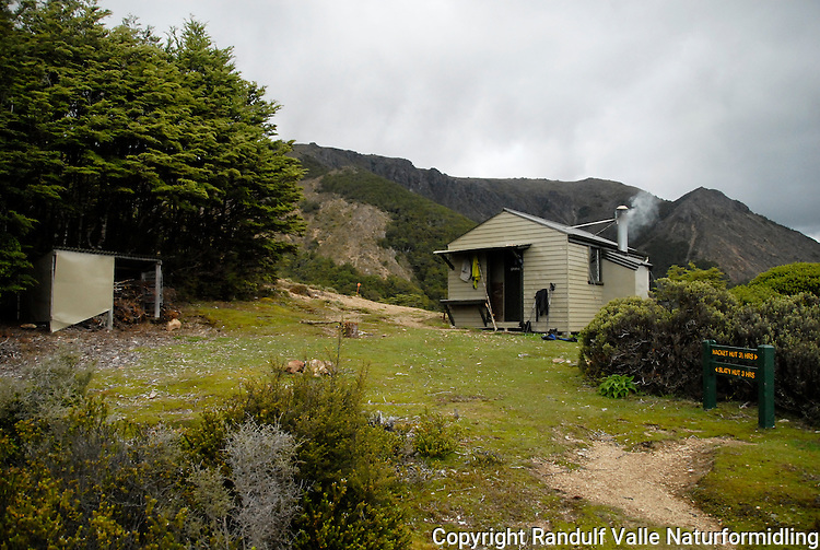 Starveal hut, Mount Richmond Forest park, New Zealand.