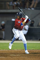 Aramis Ademan (12) of the Myrtle Beach Pelicans at bat during the 2018 Carolina League All-Star Classic at Five County Stadium on June 19, 2018 in Zebulon, North Carolina. The South All-Stars defeated the North All-Stars 7-6.  (Brian Westerholt/Four Seam Images)