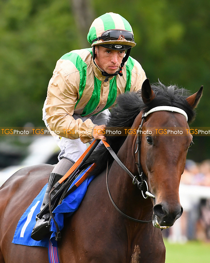 Amenhotepthethird ridden by Noel Garbutt goes down to the start during Ladies Evening Racing at Salisbury Racecourse on 15th July 2017