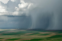Spring Rain Shower, Elbert County, Colorado