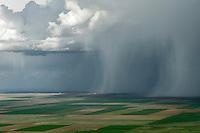 Spring Rain Shower, Elbert County, Colorado