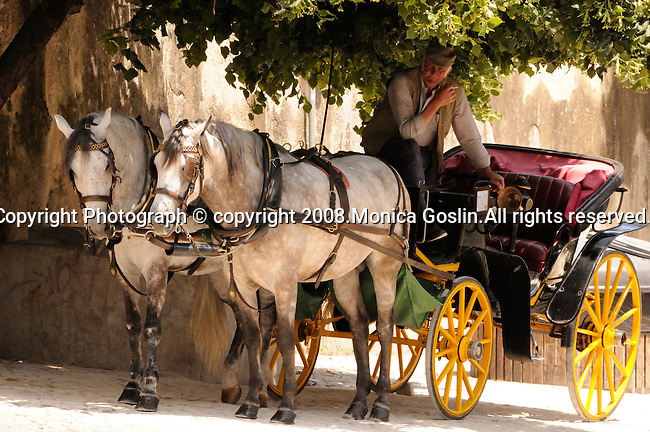 A horse carriage sits in the shade, while the driver and horses take a break from the summer heat in Sintra, Portugal.