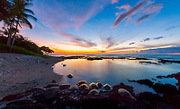At dusk, 13 or more honu (or green sea turtles) come in to rest along the shore of a private beach in Puako, Big Island.