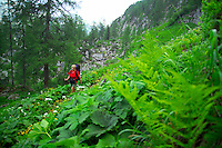 Berchtesgaden National Park, Bavavia, Germany, July 2004.  We are trekking  from hut to hut in the Bavarian mountains of Berchtesgaden. Photo by Frits Meyst/Adventure4ever.com