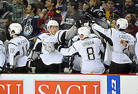 San Antonio Rampage players celebrate a goal during the first period of an AHL hockey game against the Iowa Wild, Saturday, Jan. 25, 2014, in San Antonio (Darren Abate/AHL)