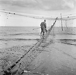 Salmon netter Dave Pullar checking one of his 'jumper' nets  for fish at low tide on the sands at Lunan Bay, Angus.<br /> Ref. Catching the Tide 11/01/08 (28th August 2001)<br /> <br /> The once-thriving Scottish salmon netting industry fell into decline in the 1970s and 1980s when the numbers of fish caught reduced due to environmental and economic reasons. In 2016, a three-year ban was imposed by the Scottish Government on the advice of scientists to try to boost dwindling stocks which anglers and conservationists blamed on netsmen.