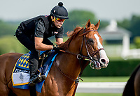 ELMONT, NY - JUNE 08: Justify gallops around the track as horses prepare on Friday for the 150th running of the Belmont Stakes at Belmont Park on June 8, 2018 in Elmont, New York. (Photo by Scott Serio/Eclipse Sportswire/Getty Images)