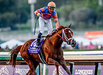 November 2, 2019: Vino Rosso, ridden by Irad Ortiz, Jr., wins the Longines Breeders' Cup Classic on Breeders' Cup World Championship Saturday at Santa Anita Park on November 2, 2019: in Arcadia, California. Kaz Ishida/Eclipse Sportswire/CSM