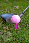 2017 Golfvrouw.nl  De Goyer