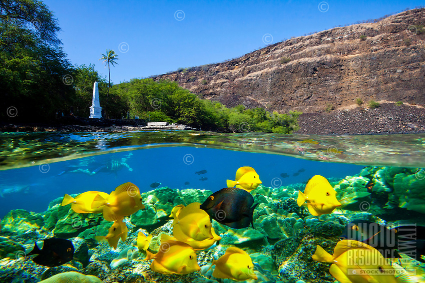 A woman snorkeling by the Captain Cook Monument, Kealakekua Bay, Big Island