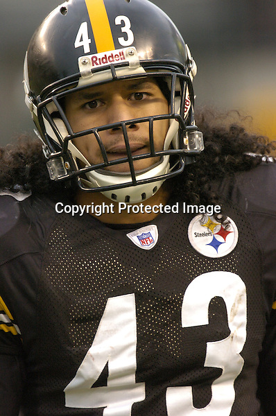 28 November 2004: troy polamalu..Pittsburgh Steelers defeated the Washington Redskins 16-7 November 28, 2004 at Heinz Field in Pittsburgh, PA....