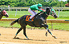 Can'tmakethisup winning The Longines Fegentri Gentlemen Championship at Delaware Park on 7/24/17 Andrea Besana, up