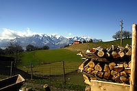 Chopped wood on farm close to Mt Pélerin and the mountains.Vevay close to Montreux, Luasanne, Switzerland.