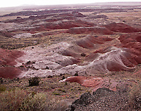 The Painted Desert of the Petrified Forest National Park<br /> <br /> With one of the world's largest and most colorful concentrations of petrified wood, multi-hued badlands of the Painted Desert, historic structures, archeological sites, and displays of over 200-million-year-old fossils, this is a surprising land of scenic wonders and fascinating science.