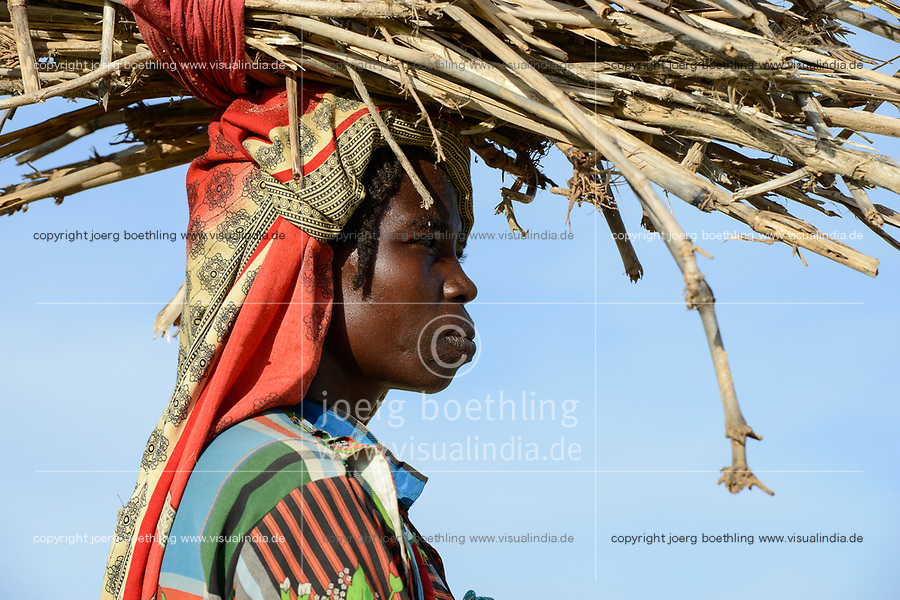 CHAD, Goz Beida, refugee camp Djabal for refugees from Darfur, Sudan, woman carry firewood / TSCHAD, Goz Beida, Fluechtlingslager Djabal fuer Fluechtlinge aus Darfur, Sudan
