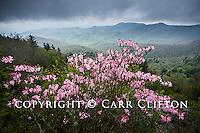 Appalachian Mountains, NC/TN/VA