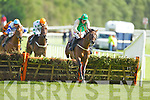 Action from the first race at Killarney Races on Monday