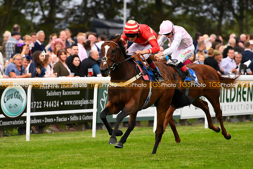 Winner of The Total Decor Ltd Handicap, Exceeding Power ridden by George Wood and trained by Martin Bosley during Ladies Evening Racing at Salisbury Racecourse on 15th July 2017
