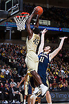 2014.01.25 - NCAA MBB - Notre Dame vs Wake Forest