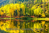 Tom Mackie, LANDSCAPES, LANDSCHAFTEN, PAISAJES, photos,+America, American, Americana, North America, Pacific Northwest, Tom Mackie, USA, Washington, Wenatchee National Forest, Wenat+chee River, autumn, autumnal, colorful, colourful, fall, horizontal, horizontals, inspiration, inspirational, inspire, landsc+ape, landscapes, natural, nature, no people, peace, peaceful, reflecting, reflection, reflections, river, scenery, scenic, se+ason, tranquil, tranquility, tree, trees, wilderness, yellow,America, American, Americana, North America, Pacific Northwest,+,GBTM170583-1,#l#, EVERYDAY