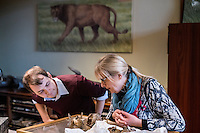 Belgium. Brussels. London. 17th November 2015<br /> (Name needed) and Dr. Mietje Germonpr&eacute;  (right) inspect the skull of an ancient dog before cutting a piece for DNA testing.<br /> Andrew Testa for the New York Times