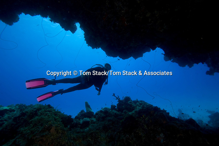 Scuba diver, Eleuthera, Bahamas  Model Released
