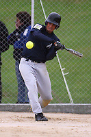Auckland's Michael Cameron bats. Auckland 39ers v Wellington Lancers -  National League Softball Championship finals at Fraser Park, Wellington, New Zealand on Sunday 2 February 2009. Photo: Dave Lintott / lintottphoto.co.nz